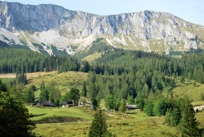 Brunnalm - Hohe Veitsch