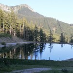 Der Teich auf der Alm